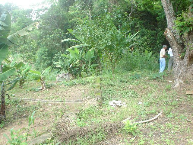 Chacara à venda em Chácara Roselandia, Cotia - SP