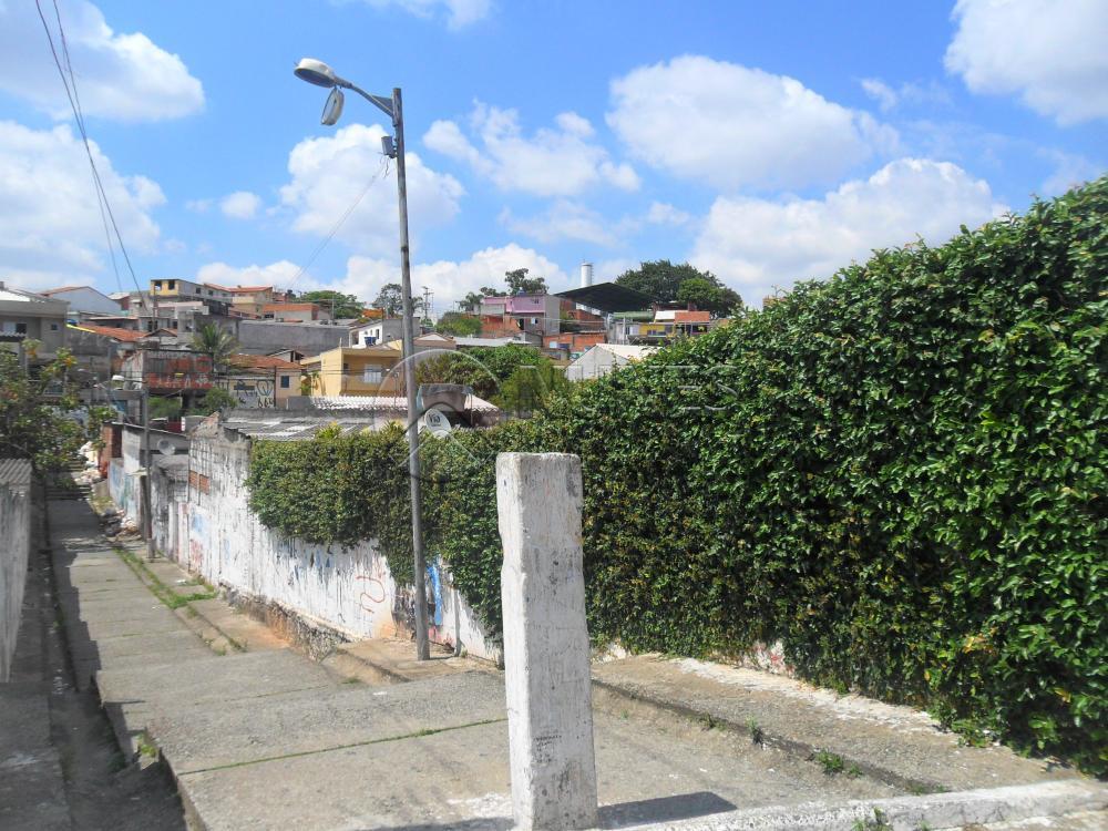 Lote / Terreno Residencial à venda em Jardim Elvira, Osasco - SP
