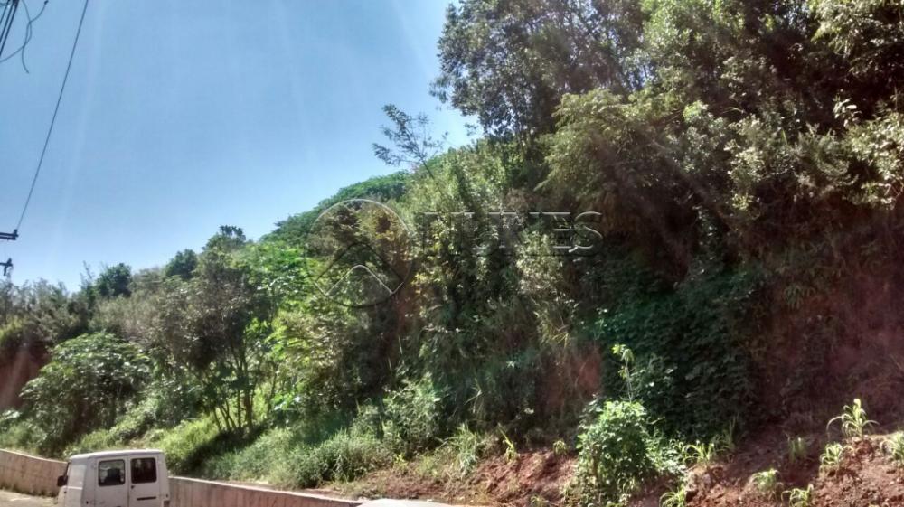 Lote / Terreno Residencial à venda em Vila Menck, Osasco - SP