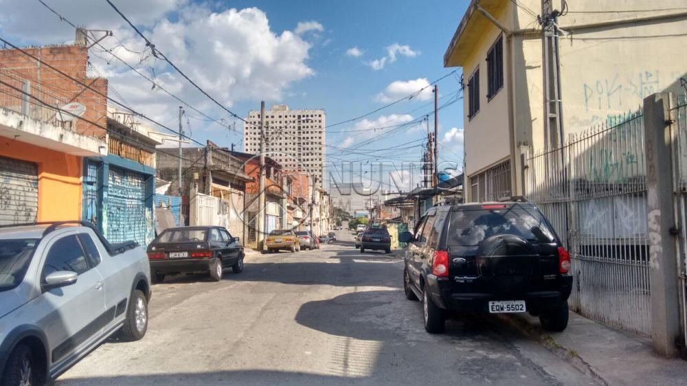 Terreno Padrão à venda em Vila Silviania, Carapicuíba - SP