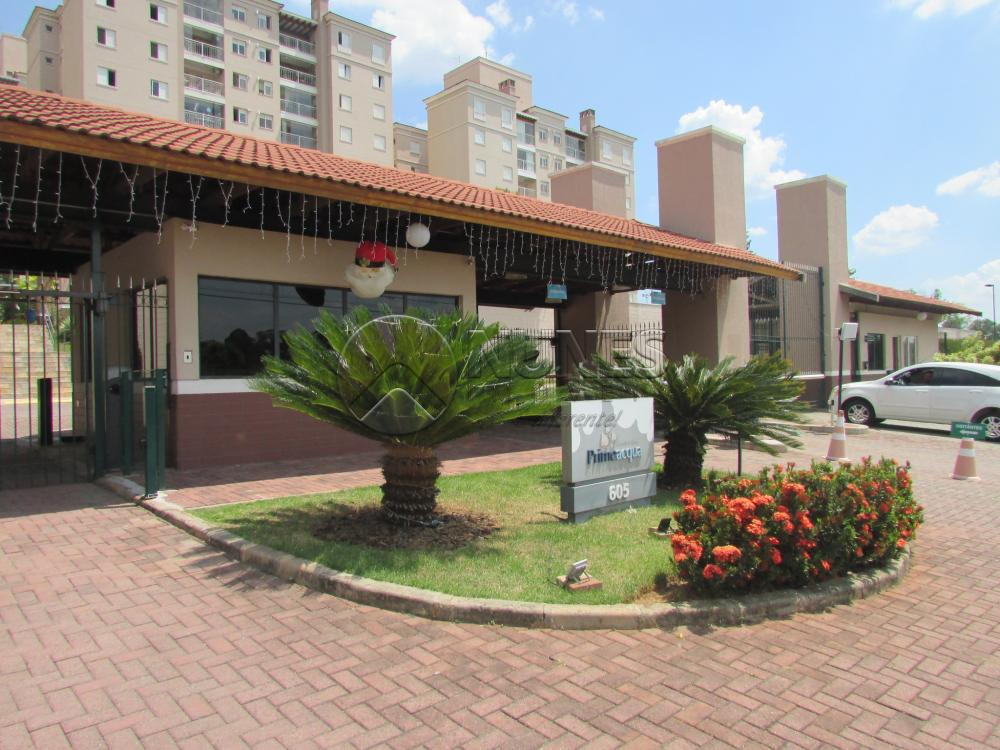 Alugar Apartamento / Apartamento em Campinas apenas R$ 1.550,00 - Foto 1