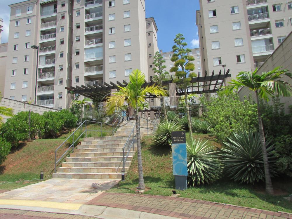 Alugar Apartamento / Padrão em Campinas apenas R$ 1.550,00 - Foto 2