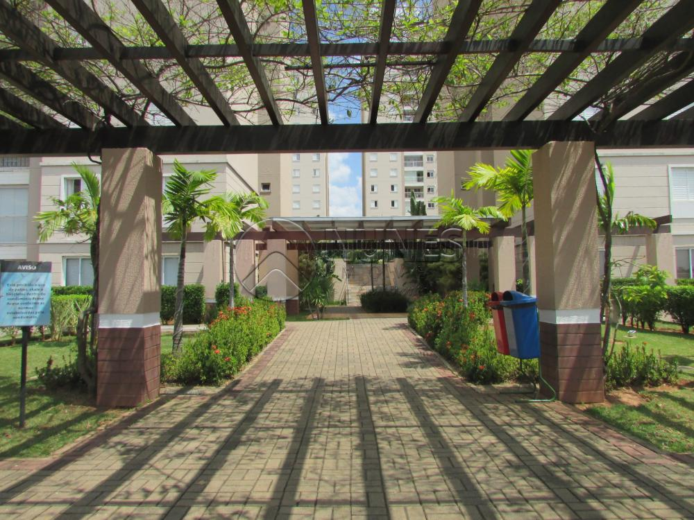 Alugar Apartamento / Padrão em Campinas apenas R$ 1.550,00 - Foto 4