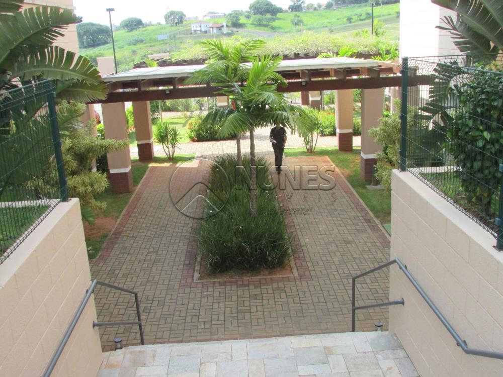Alugar Apartamento / Padrão em Campinas apenas R$ 1.550,00 - Foto 5