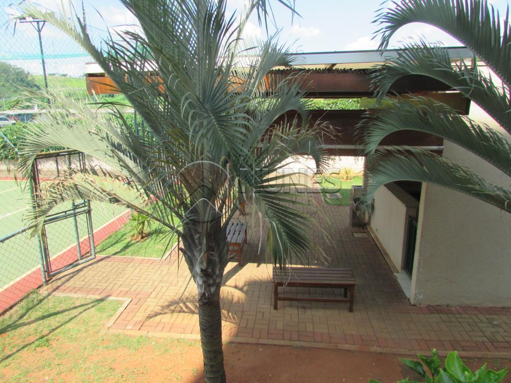 Alugar Apartamento / Apartamento em Campinas apenas R$ 1.550,00 - Foto 9