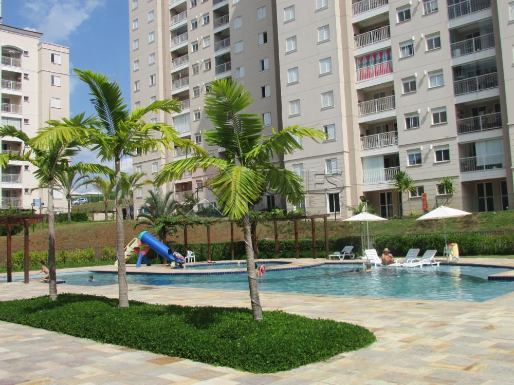 Alugar Apartamento / Apartamento em Campinas apenas R$ 1.550,00 - Foto 12