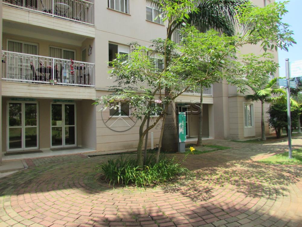 Alugar Apartamento / Padrão em Campinas apenas R$ 1.550,00 - Foto 14