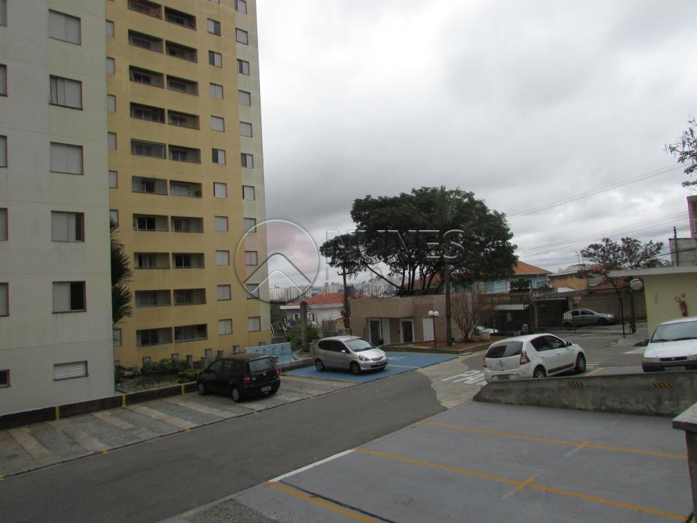 Alugar Apartamento / Padrão em São Paulo apenas R$ 1.100,00 - Foto 23