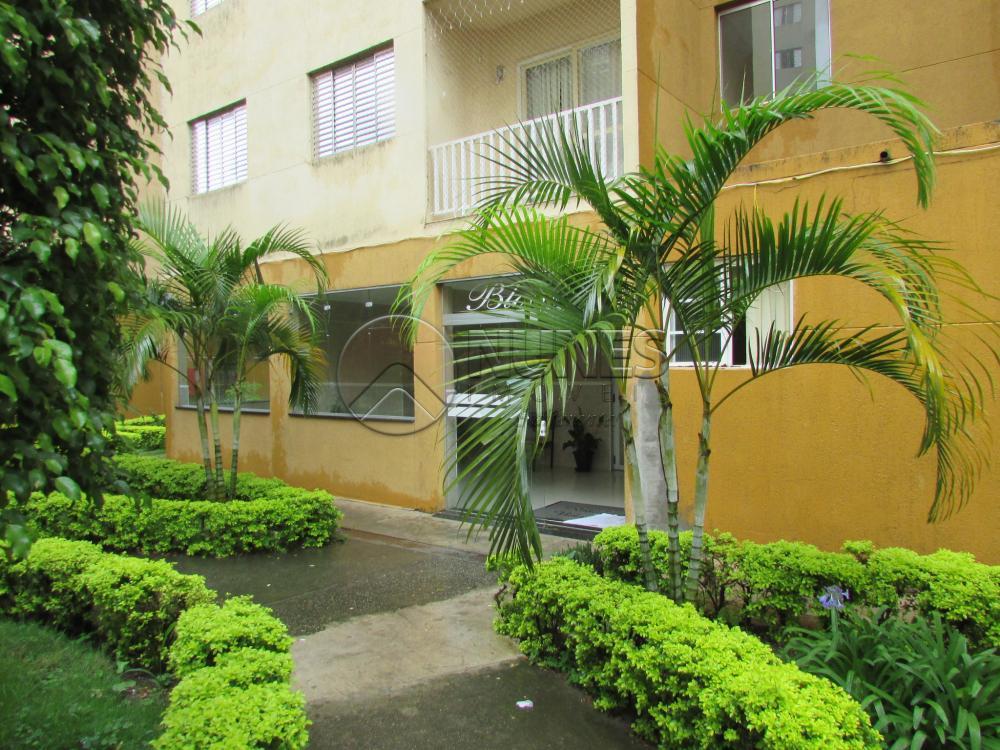 Alugar Apartamento / Apartamento em Osasco apenas R$ 950,00 - Foto 5