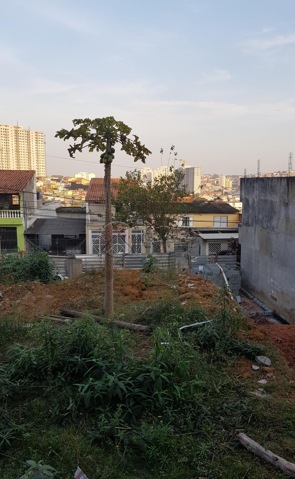 Comprar Terreno / Terreno em Osasco apenas R$ 165.000,00 - Foto 6