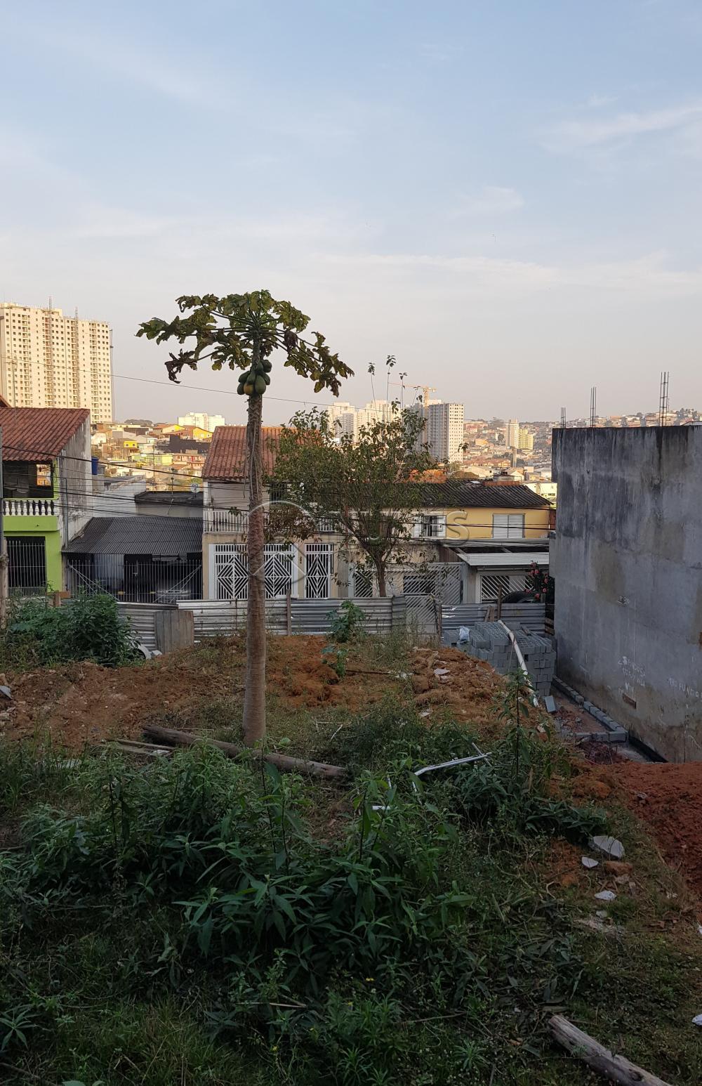 Comprar Terreno / Terreno em Osasco apenas R$ 165.000,00 - Foto 7