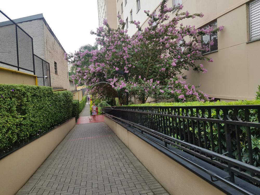 Alugar Apartamento / Padrão em São Paulo apenas R$ 1.300,00 - Foto 6