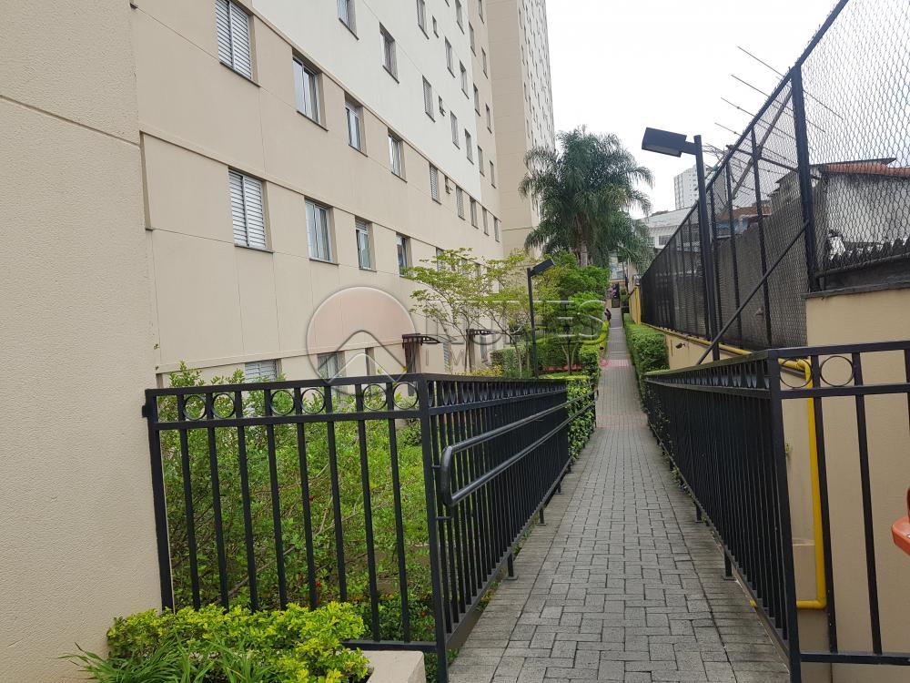 Alugar Apartamento / Padrão em São Paulo apenas R$ 1.300,00 - Foto 14