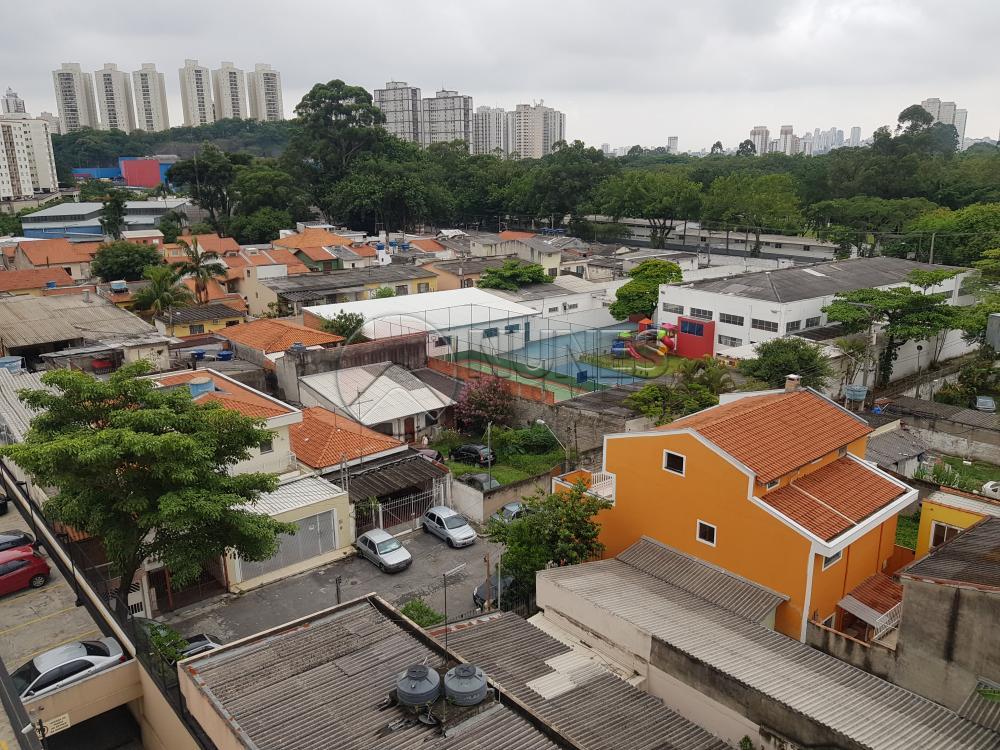 Alugar Apartamento / Padrão em São Paulo apenas R$ 1.300,00 - Foto 35