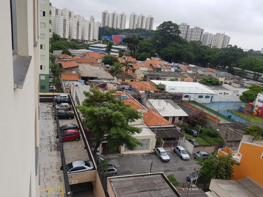 Alugar Apartamento / Padrão em São Paulo apenas R$ 1.300,00 - Foto 40