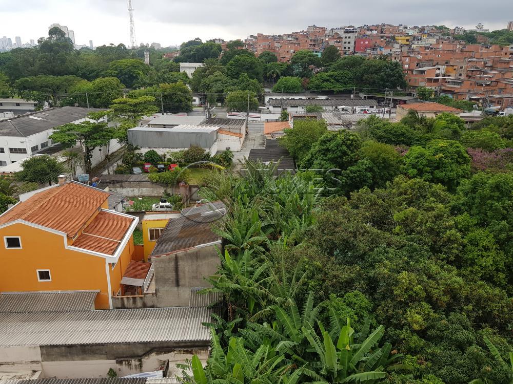 Alugar Apartamento / Padrão em São Paulo apenas R$ 1.300,00 - Foto 41