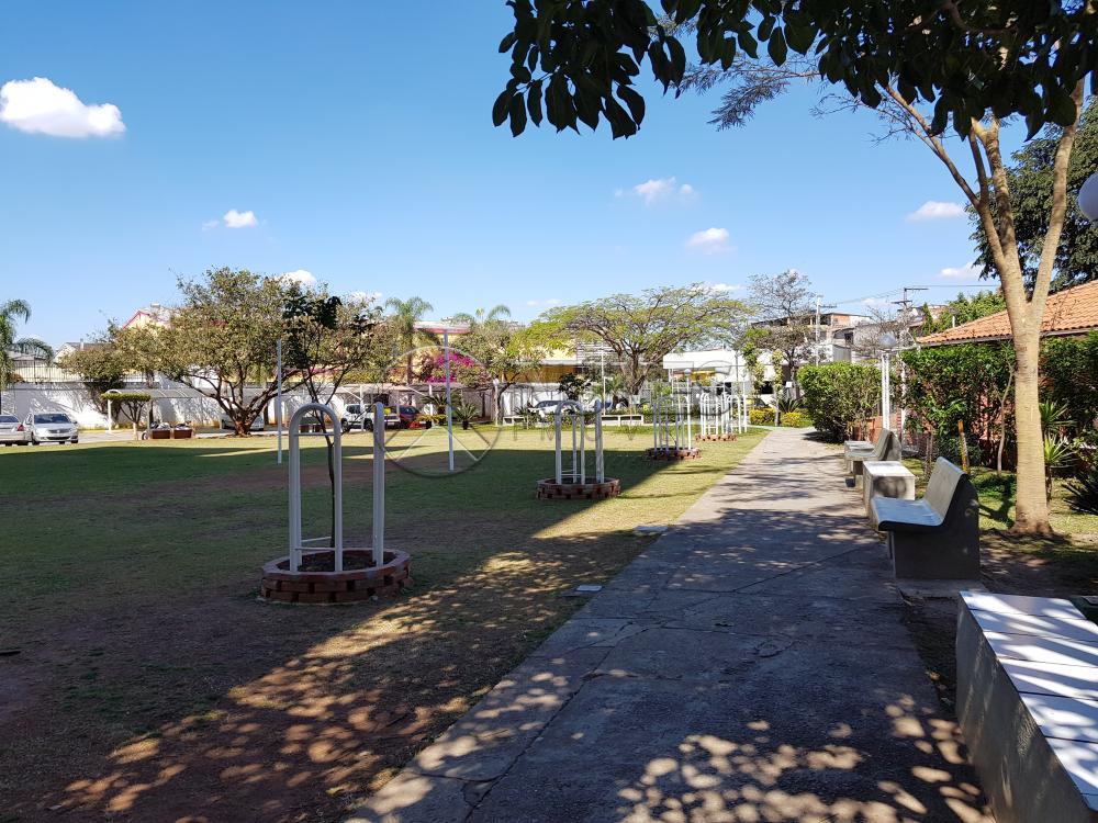 Alugar Apartamento / Padrão em Osasco apenas R$ 1.600,00 - Foto 24