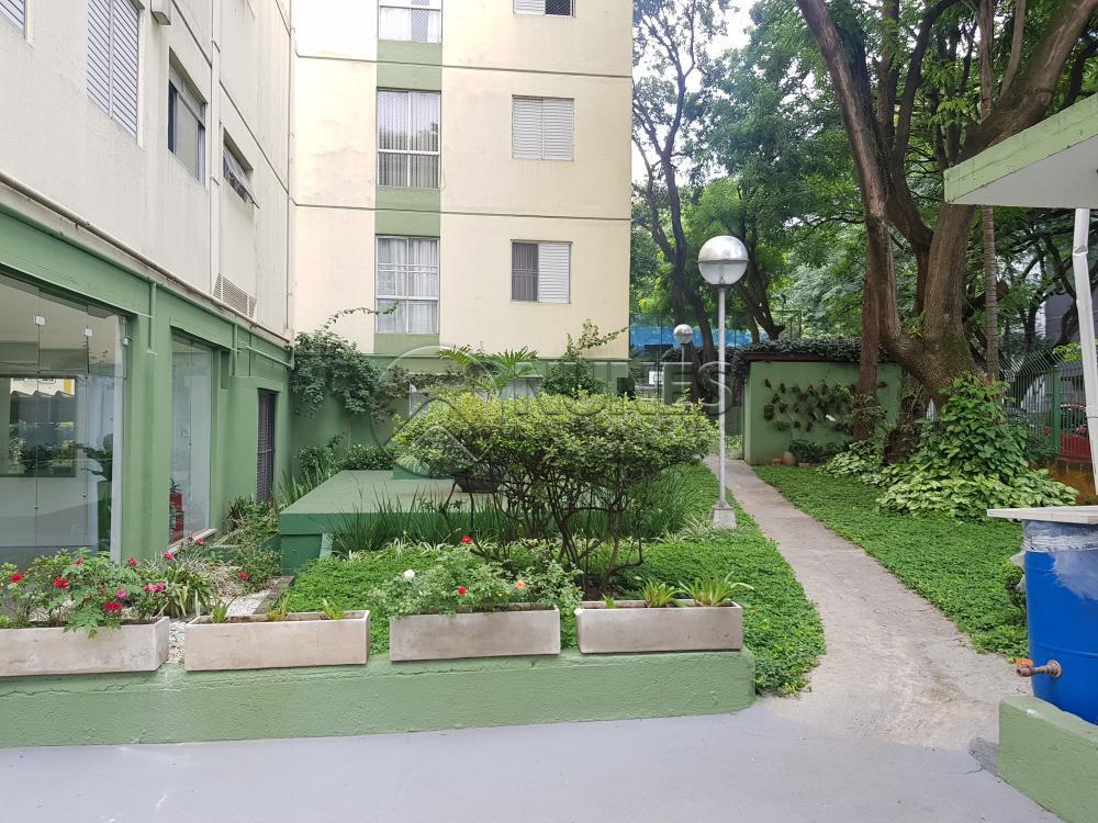 Alugar Apartamento / Padrão em Osasco apenas R$ 1.050,00 - Foto 1