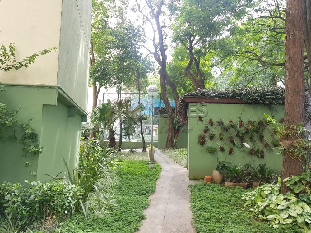 Alugar Apartamento / Padrão em Osasco apenas R$ 1.050,00 - Foto 2
