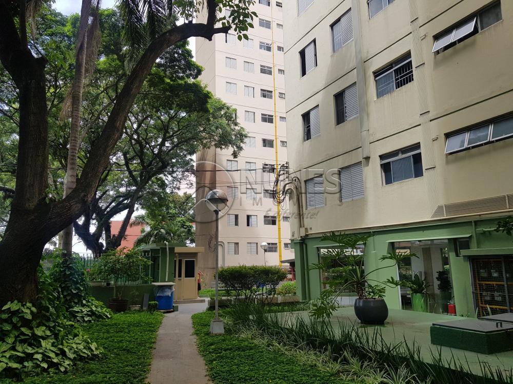 Alugar Apartamento / Padrão em Osasco apenas R$ 1.050,00 - Foto 3