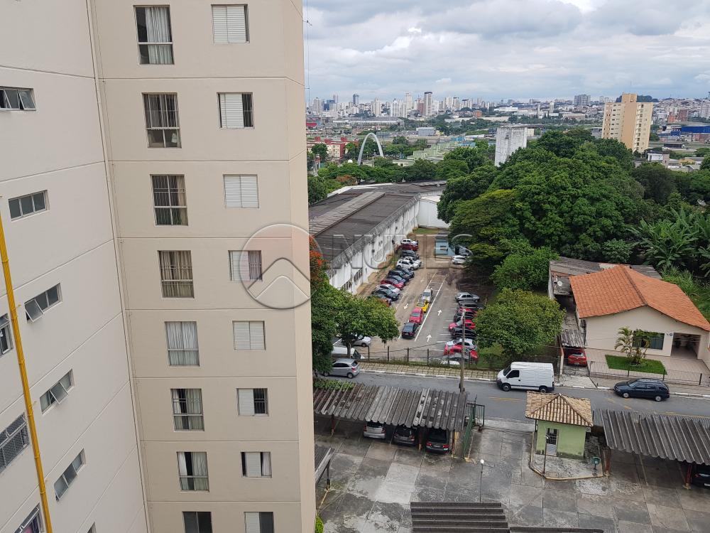 Alugar Apartamento / Padrão em Osasco apenas R$ 1.050,00 - Foto 31