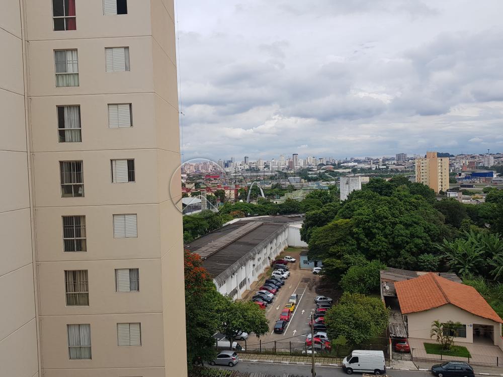Alugar Apartamento / Padrão em Osasco apenas R$ 1.050,00 - Foto 33
