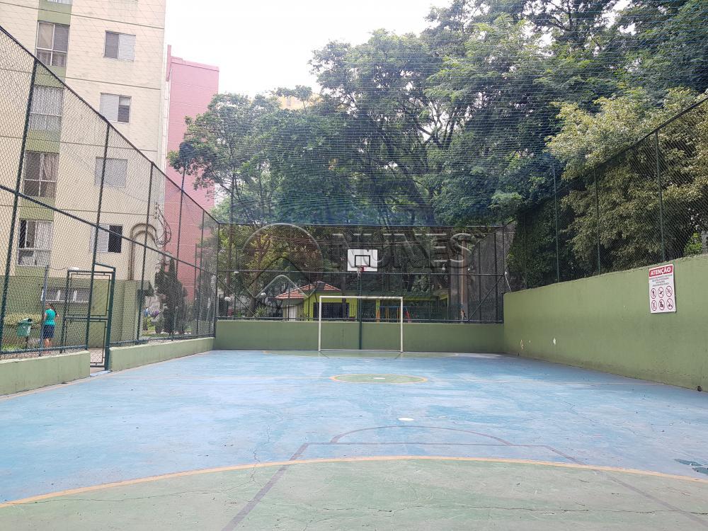 Alugar Apartamento / Padrão em Osasco apenas R$ 1.050,00 - Foto 37