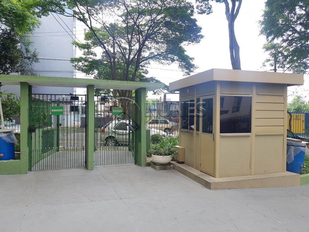 Alugar Apartamento / Padrão em Osasco apenas R$ 1.050,00 - Foto 39