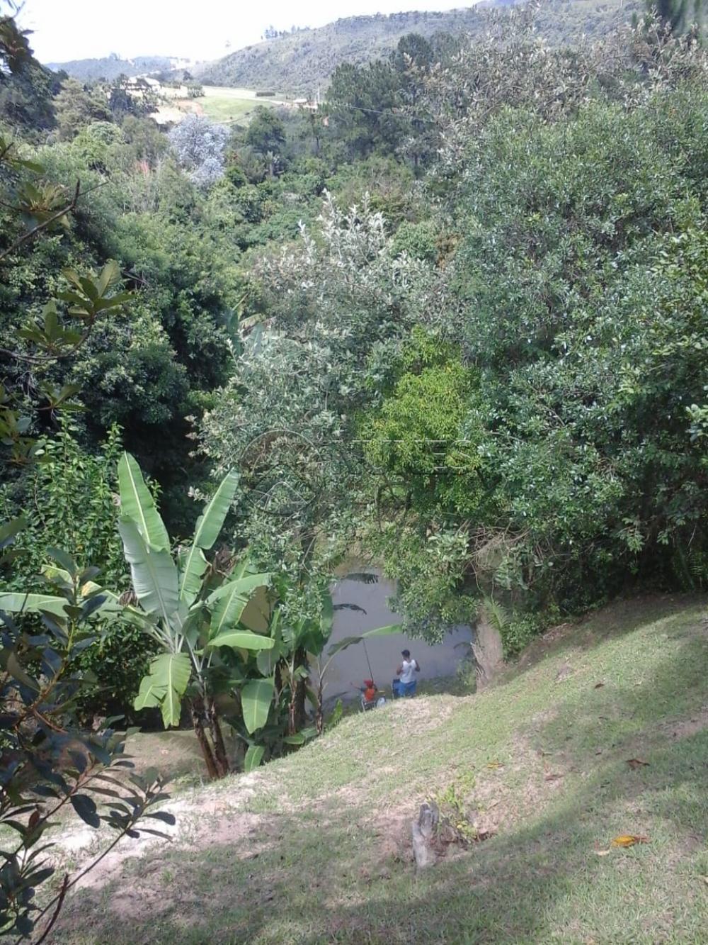 Comprar Rurais / Chacara em São Roque apenas R$ 700.000,00 - Foto 5