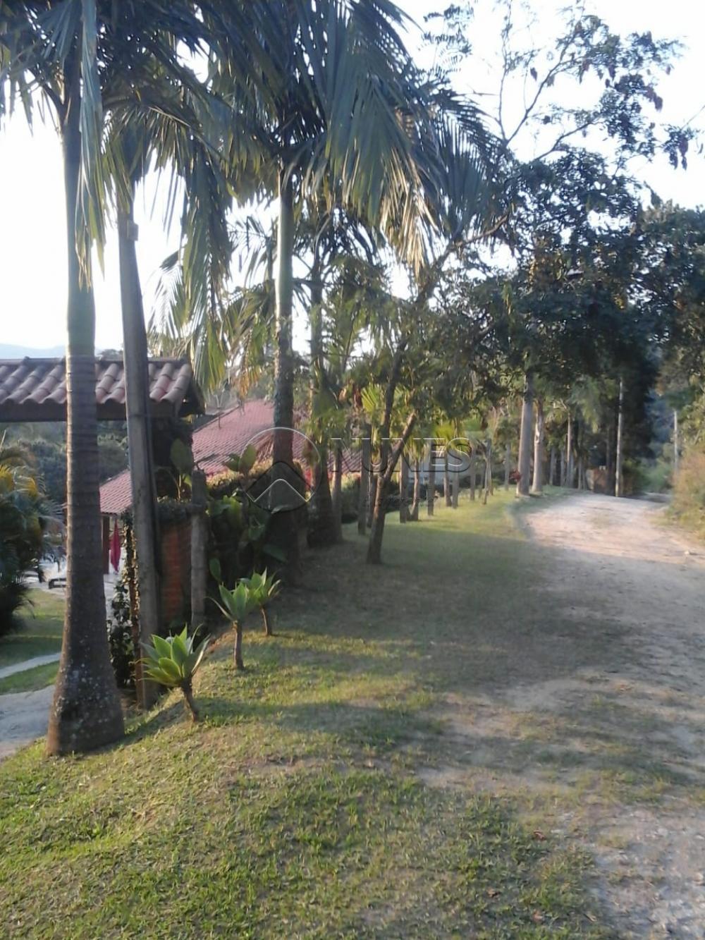 Comprar Rurais / Chacara em São Roque apenas R$ 700.000,00 - Foto 7