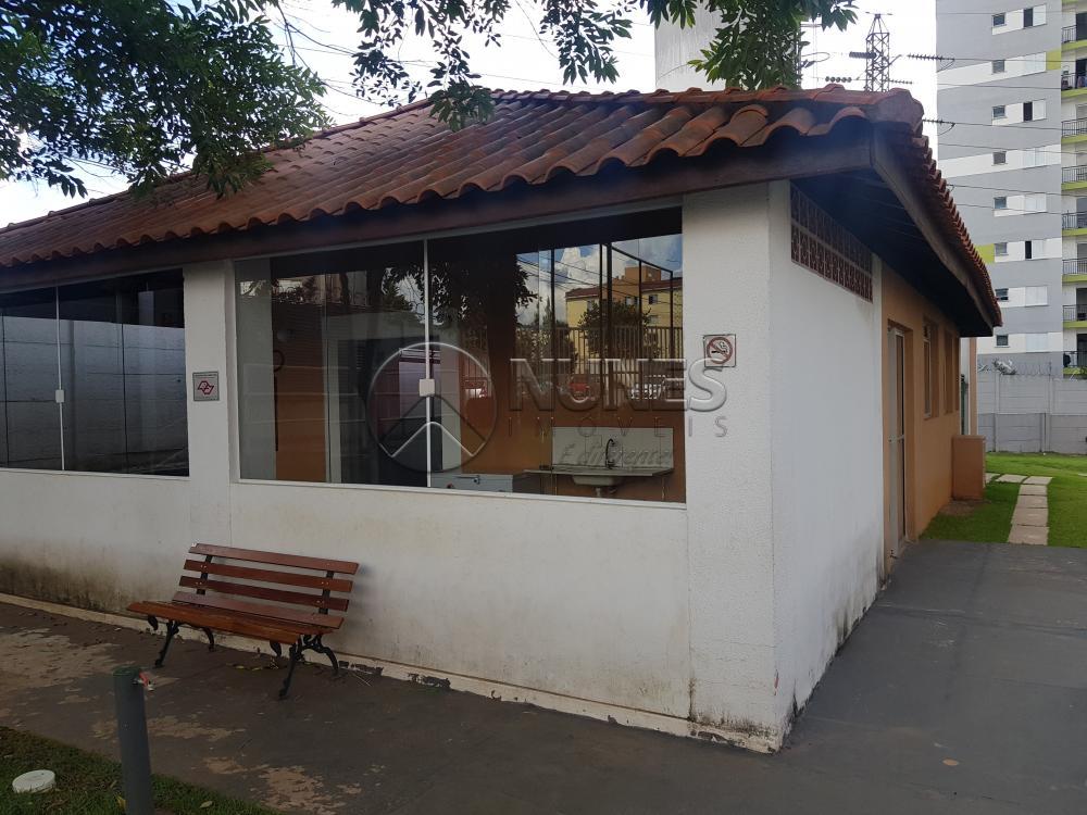Alugar Apartamento / Padrão em Osasco R$ 700,00 - Foto 15