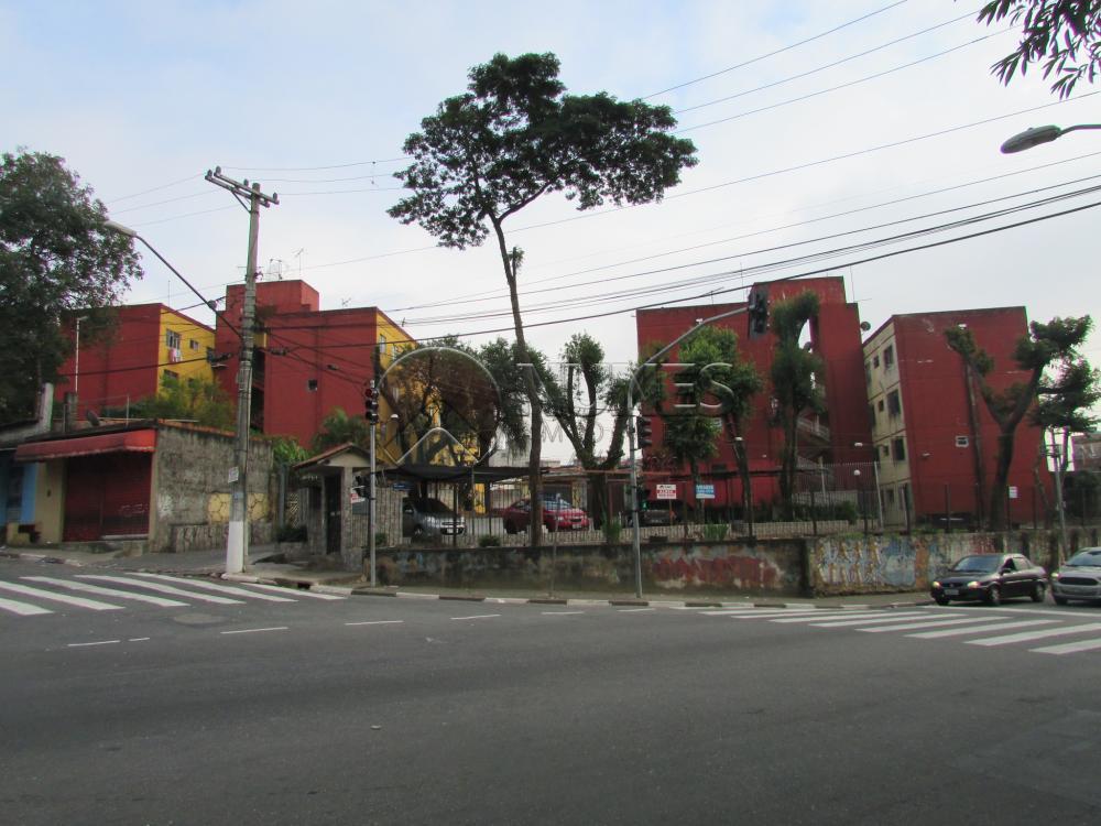 Comprar Apartamento / Padrão em Carapicuíba apenas R$ 170.000,00 - Foto 31