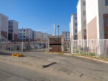 Alugar Apartamento / Padrão em Osasco R$ 1.100,00 - Foto 16