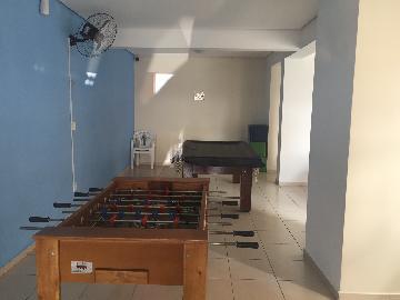 Alugar Apartamento / Padrão em Osasco R$ 1.200,00 - Foto 41
