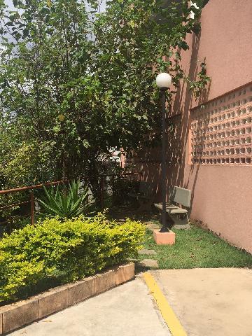 Alugar Apartamento / Padrão em Osasco R$ 1.200,00 - Foto 37