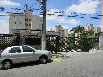 Alugar Apartamento / Padrão em Osasco R$ 980,00 - Foto 12
