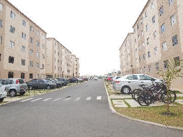 Alugar Apartamento / Apartamento em Cotia apenas R$ 790,00 - Foto 28