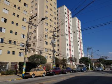 Alugar Apartamento / Padrão em Osasco R$ 800,00 - Foto 13