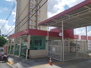 Alugar Apartamento / Padrão em Osasco R$ 850,00 - Foto 11