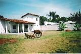 Caraguatatuba Morro do Algodao Casa Venda R$680.000,00