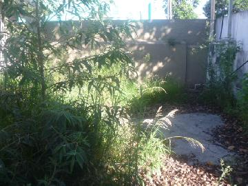 Alugar Casa / Terrea em Osasco R$ 3.000,00 - Foto 3