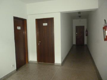 Alugar Comercial / Sala em Osasco apenas R$ 2.000,00 - Foto 3