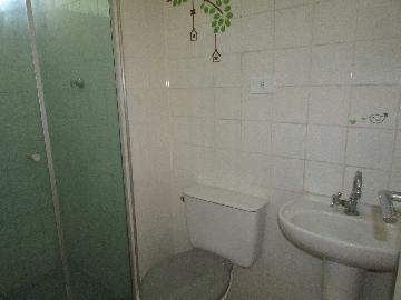 Alugar Apartamento / Padrão em Osasco R$ 750,00 - Foto 8