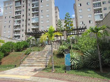 Alugar Apartamento / Apartamento em Campinas apenas R$ 1.550,00 - Foto 2