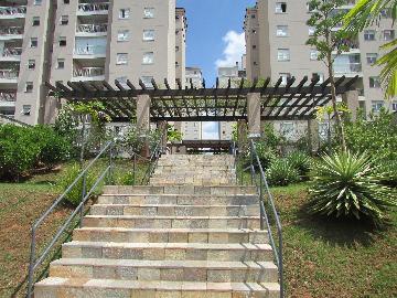 Alugar Apartamento / Apartamento em Campinas apenas R$ 1.550,00 - Foto 3