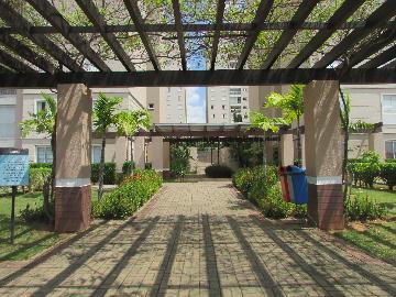 Alugar Apartamento / Apartamento em Campinas apenas R$ 1.550,00 - Foto 4