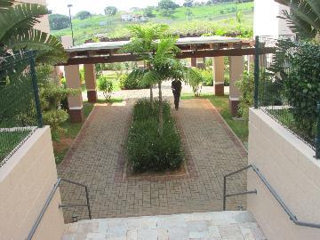 Alugar Apartamento / Apartamento em Campinas apenas R$ 1.550,00 - Foto 5