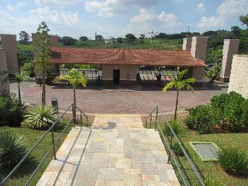 Alugar Apartamento / Apartamento em Campinas apenas R$ 1.550,00 - Foto 6