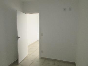 Alugar Apartamento / Apartamento em Campinas apenas R$ 1.550,00 - Foto 19