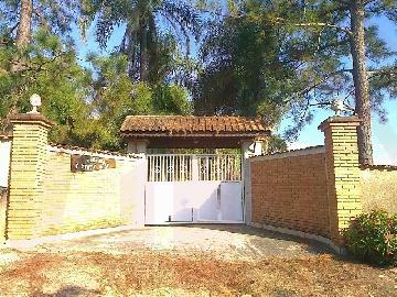 Elias Fausto Ipiranga Chacara Venda R$900.000,00 4 Dormitorios 2 Vagas Area do terreno 8000.00m2 Area construida 500.00m2